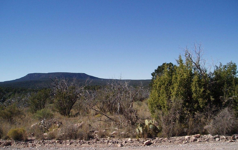 52550 Via De Oro, Seligman, AZ. 86337